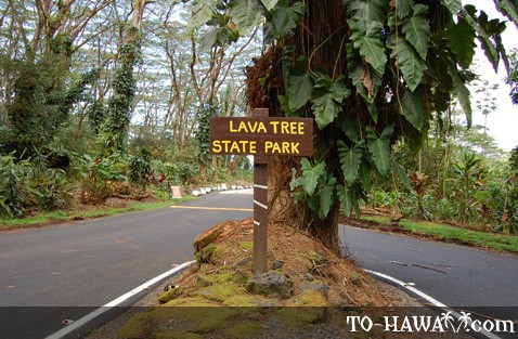 Entrance to Lava Tree State Park