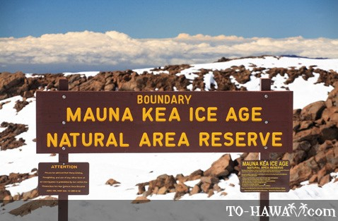 Mauna Kea Ice Age Natural Area Reserve