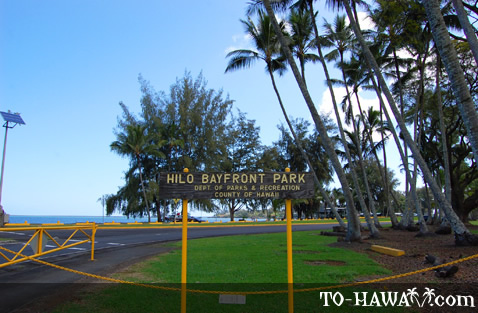 hilo bay beachfront park big island