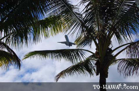 Plane flying over Hilo Bay