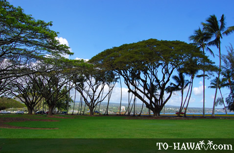 Hilo Bay Beachfront Park