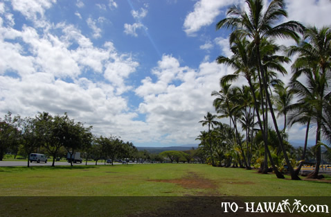 Spacious beach park in Hilo