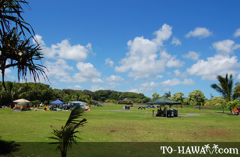 Spacious beach park in Puna