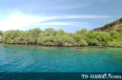 Best bay for Hawaii snorkeling