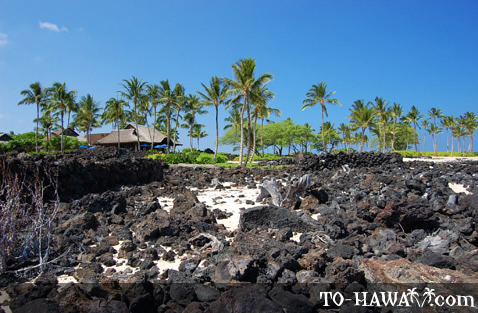 Black lava rocks