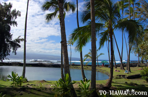 Beach park in Hilo