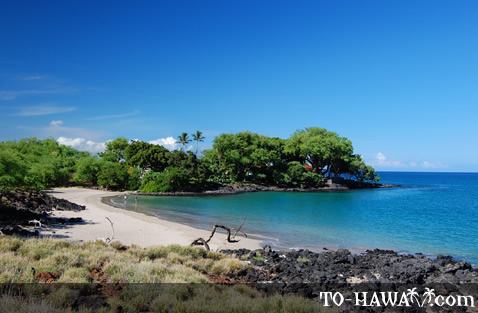 Secluded Big Island beach