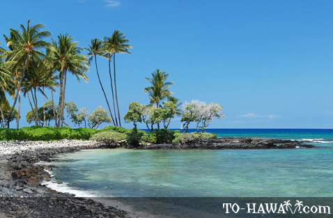 Picturesque Kohala beach