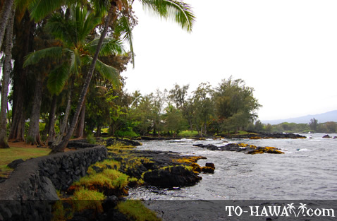 Beach park near Hilo