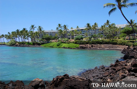 Surrounded by Hilton Waikoloa Village