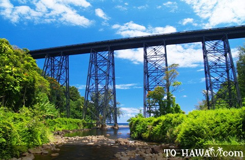 Hakalau bridge