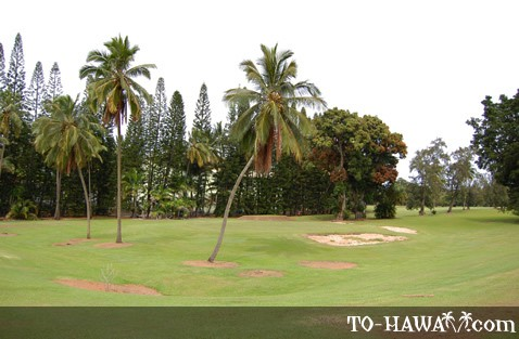 Banyan Golf Course