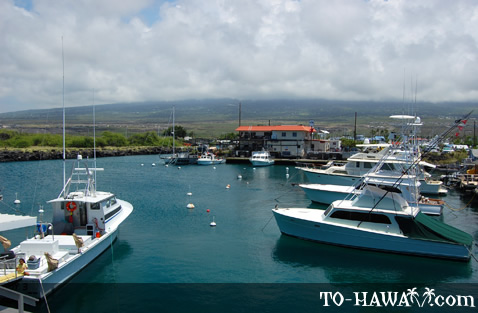 Honokohau Harbor