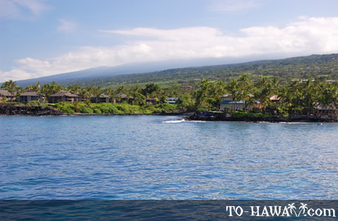 South Kona shoreline