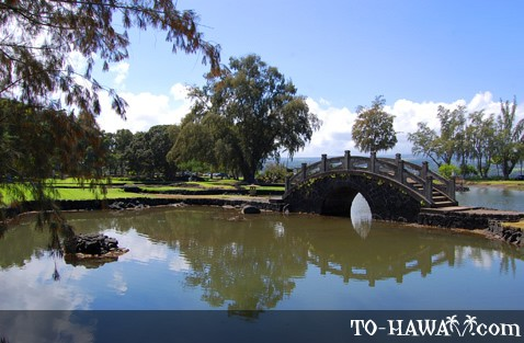 Park in downtown Hilo