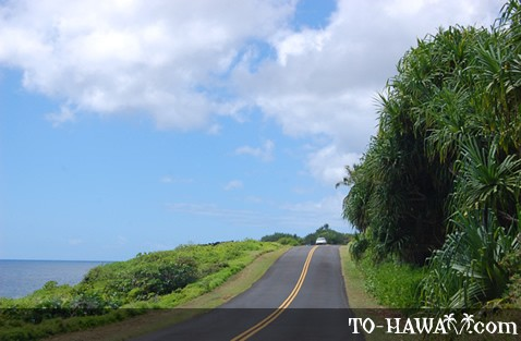 Red Road (Route 137) on Big Island