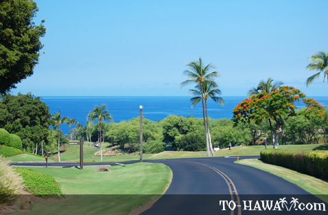 Road leading to popular Mauna Kea Beach