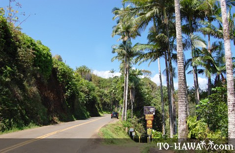 Old Mamalahoa Highway