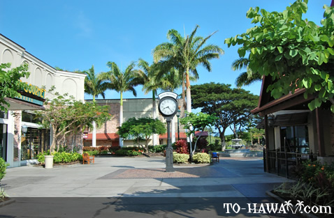 Shopping in Kohala Coast