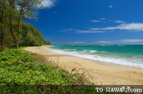 Pounders Beach, Oahu