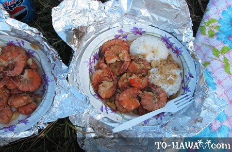 Hawaiian plate lunch with shrimps