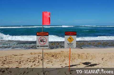 Warning signs on a beach