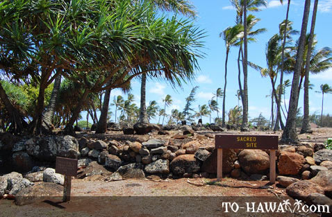 Ancient Hawaiian site