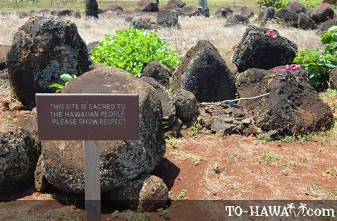Sacred Hawaiian site