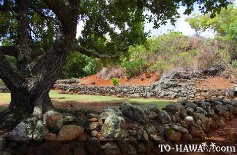 Hawaiian ancient site