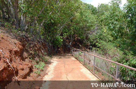 Walkway near the heiau