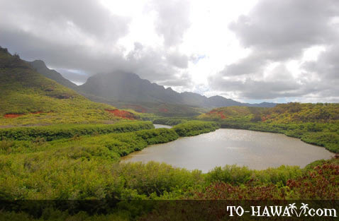 Mystic Kauai location
