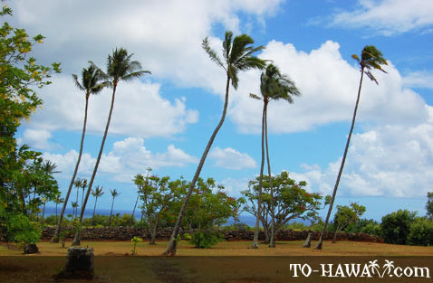 Located at Wailua State Park