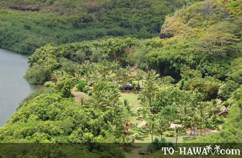 View to Kamokila Hawaiian Village
