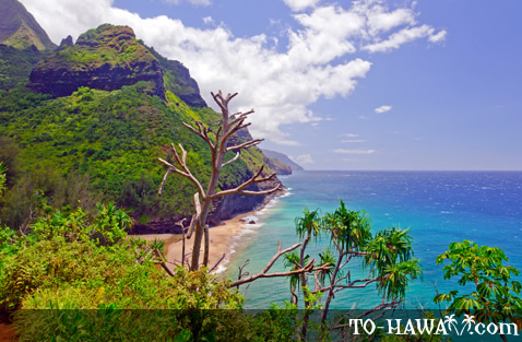 View from Kalalau Trail