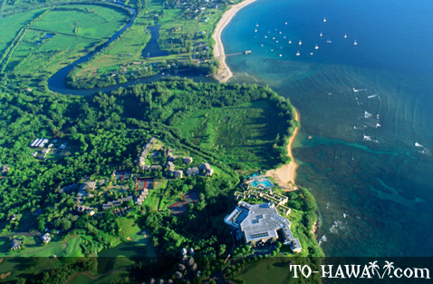 Pu'u Poa Beach from above