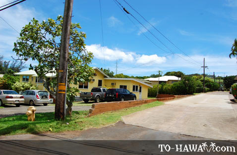 Homes in Kalaheo