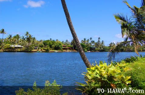 Luxury homes front Wailua River