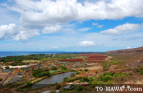 On the way to Waimea Canyon