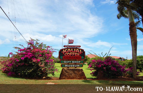 Entrance to the coffee plantation