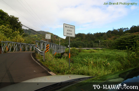 Kuhio Highway (Route 560) double bridge
