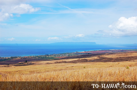 Island of Ni'ihau on the horizon