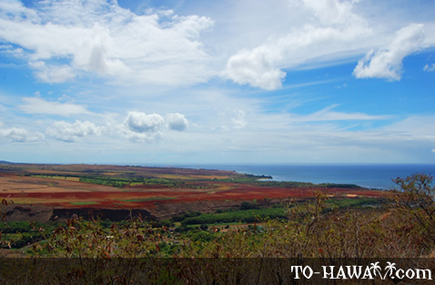 View to Kauai's west shore