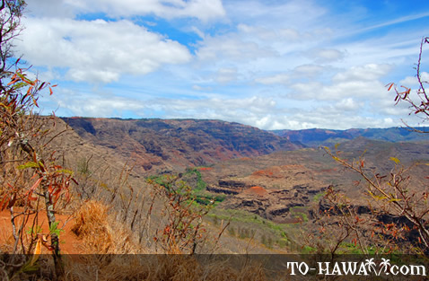 View to Waimea Canyon