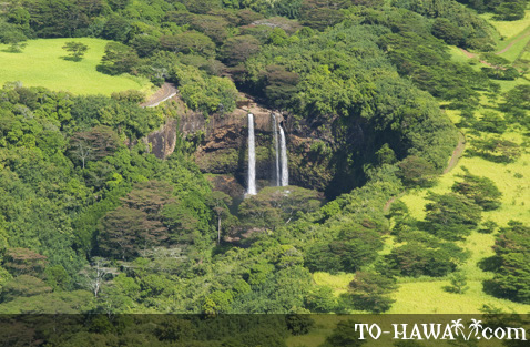 Aerial view of Wailua Falls
