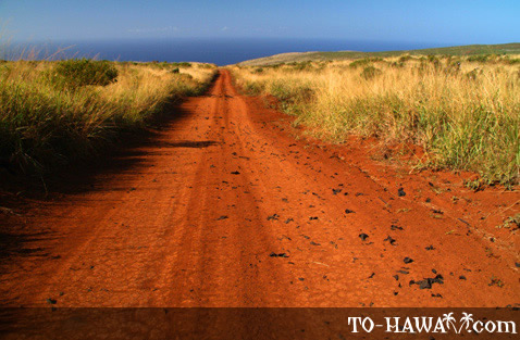Red dirt road to Kahekili's Leap