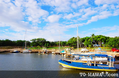 Manele Harbor boats
