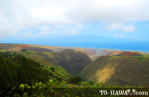 View to Maui from Munro Trail