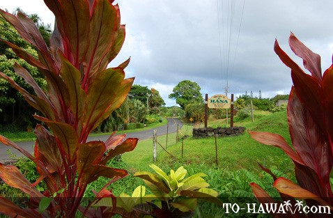 Located on the Road to Hana