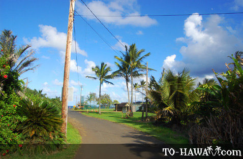 Road to Ke'anae Peninsula