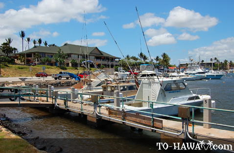 Located next to Ma'alaea Harbor Shops